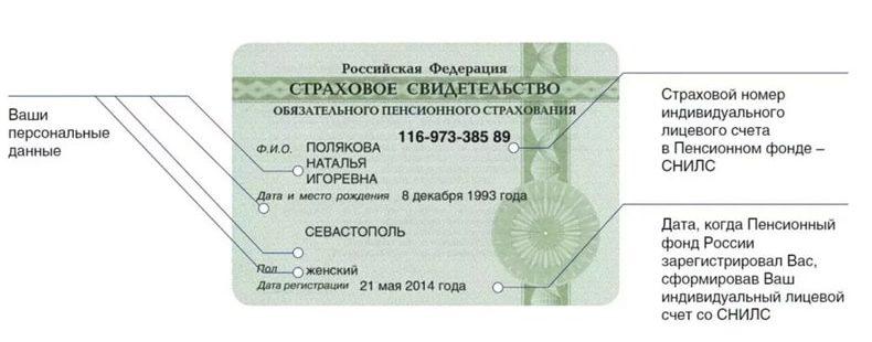 Как по паспортным данным узнать номер СНИЛС